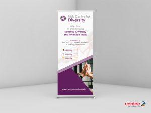 Irish Centre of Diversity Roll up Banner